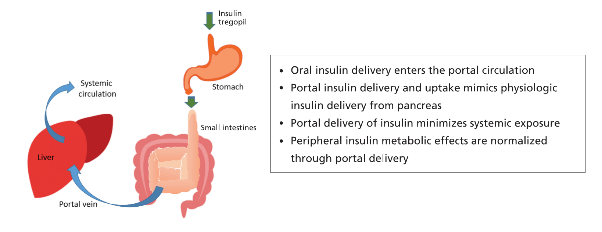 Insulin Tregopil delivery